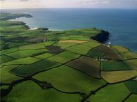 Оценка земельных участков и прав пользования ими